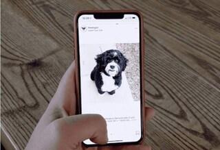 Instagram si rivoluziona: il feed si consulterà orizzontalmente