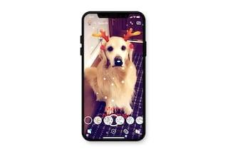 Ora su Snapchat puoi applicare i filtri anche al tuo cane