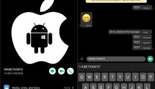 Su WhatsApp arriva la modalità notturna: perché fa bene agli occhi (e alla batteria)