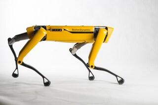 Spot, il robot a quattro zampe di Boston Dynamics si potrà comprare da quest'anno