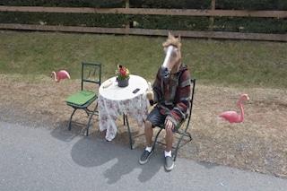 In Google Maps c'è un uomo con la testa di cavallo nascosto dentro a Street View