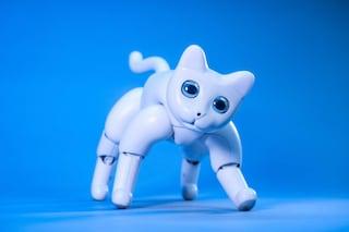 MarsCat, il gatto robot che miagola come un micio vero