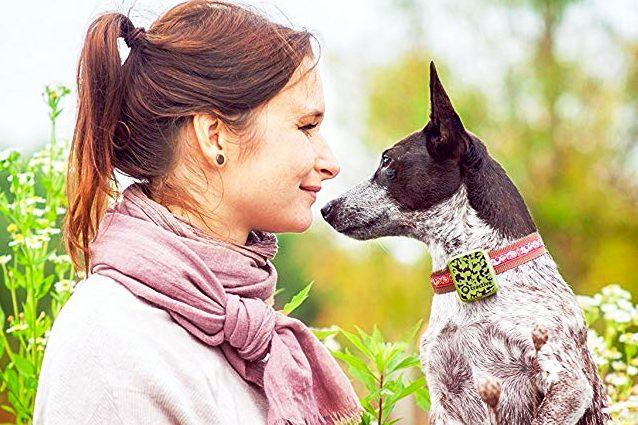miglior gps per cani