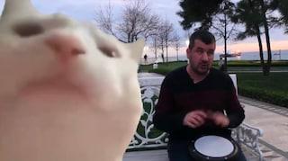 Chi è Bilal Göregen, il percussionista di strada protagonista del meme con il gatto che balla