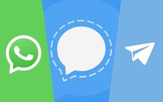 WhatsApp sta perdendo milioni di utenti (che vanno su Signal e Telegram)