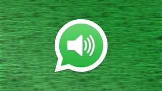 Come registrare una chiamata WhatsApp