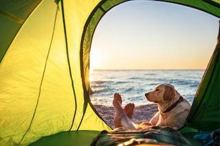 Migliori tende da spiaggia: classifica, guida all'acquisto e prezzi