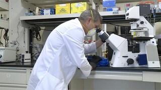 Questo chip può tracciare il coronavirus e le varianti con test veloci ed economici