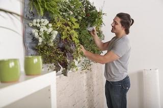 Grandi manovre di primavera, per casa e giardino la soluzione è online