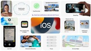 Apple ha annunciato iOS 15: cosa c'è nel prossimo aggiornamento del tuo iPhone
