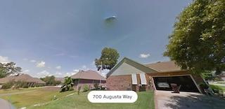 Trova un UFO su Google Maps, ma in realtà è cacca di uccello