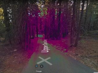 "C'è una foresta ""infestata"" su Google Maps"