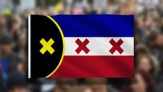 """Va a un raduno di no-vax con la """"Freedom Flag"""", ma in realtà è una bandiera di Minecraft"""