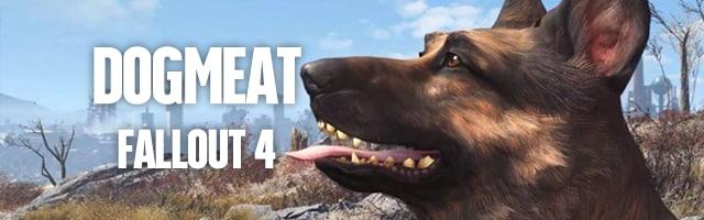 dogmeat fallout 4