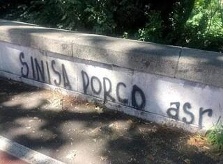 """Mihajlovic, a Roma la vergognosa scritta contro il tecnico del Bologna: """"Sinisa porco"""""""